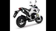 Moto - News: Honda MSX125 2013: la minibike... X-treme!