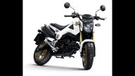 Moto - News: Honda MSX125: nuovi colori 2014
