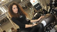 Moto - Gallery: Ragazze a Motodays 2014 - Parte seconda