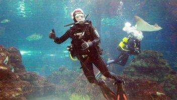 Moto - News: Checa nuota con gli squali