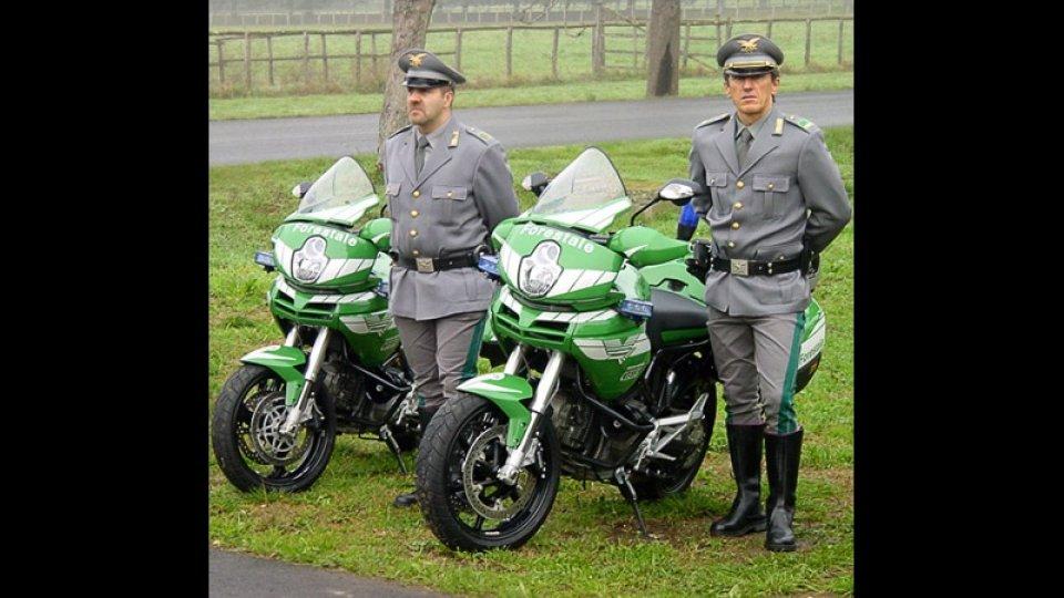 Moto - Gallery: Ducati Multistrada Forestale