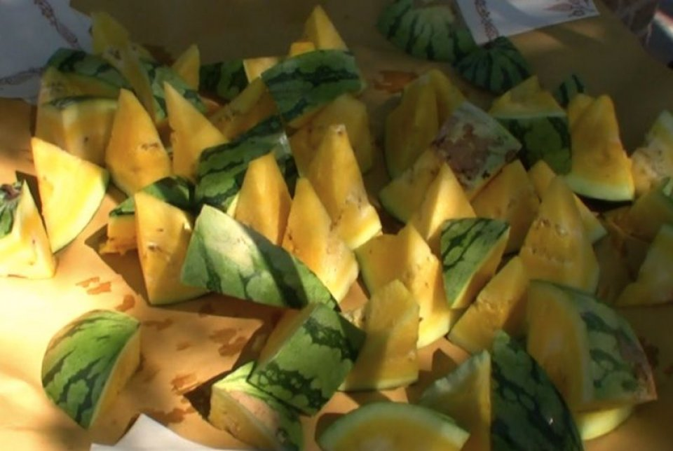 Vale fa i cocomeri gialli