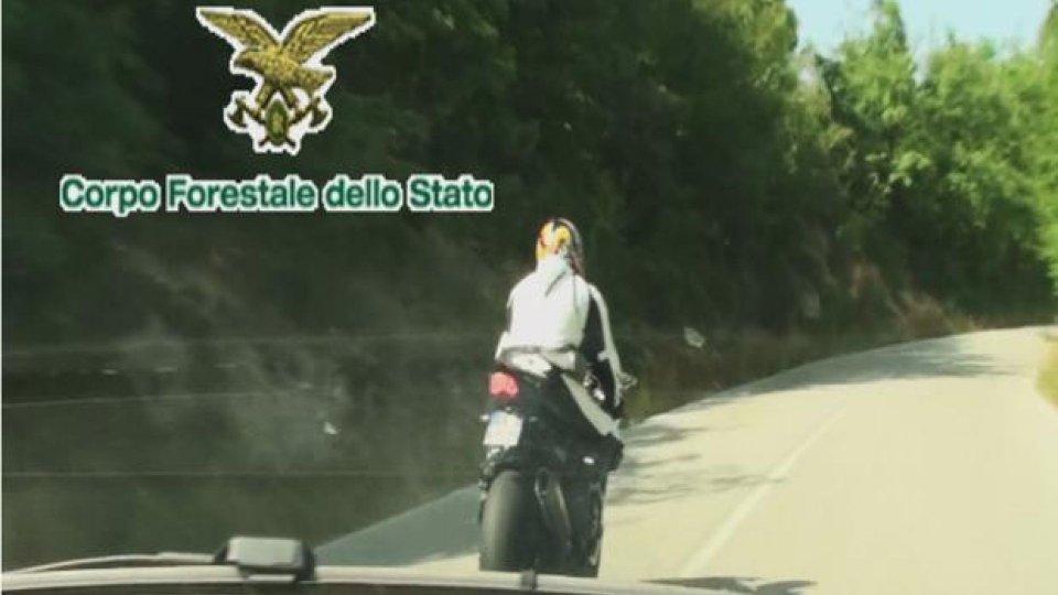 Moto - News: Bocca Serriola: ritirate 10 patenti