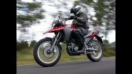 Moto - News: Derbi Terra 125
