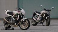 Moto - News: Suzuki Gladius Cup 2009