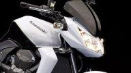 Moto - News: Kawasaki Z750 2010 Special Edition