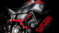 Moto - News: Yamaha MT-07 Moto Cage 2015
