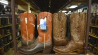 {Texas ambiente} 2015-90005 P02 ambience 2015