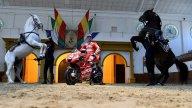MotoGP: Dovizioso incontra il suo duplice spirito a Jerez