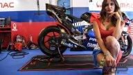 MotoGP: Umbrella Girl Red Bull Ring