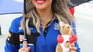 SBK: Le Umbrella Girl riscaldano Phillip Island