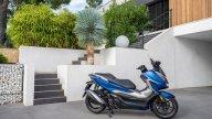 Moto - Scooter: Honda Forza 350: nuovo propulsore per il 'mediano' della rinnovata gamma