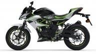 "Moto - News: Kawasaki Z125 e Ninja 125 2021: 16enni felici! Svelate le piccole ""verdi"" - foto"
