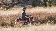 Moto - Test: Honda Trail 125 2021 - TEST