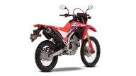Moto - News: Honda CRF300 L e CRF300 Rally, le dual purpose versatili e leggere