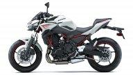 Moto - News: Kawasaki Z650 e Z900, le due naked sempre sulla cresta dell'onda