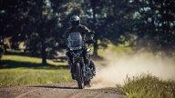 Moto - News: Triumph Tiger 1200: con Carmicheal va forte anche sulla pista cross!