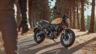 Moto - News: Ducati Scrambler 2022: arrivano Tribute e Urban Motard