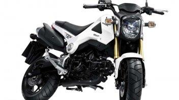 Moto - News: Honda MSX 125, la 'moto di scorta'